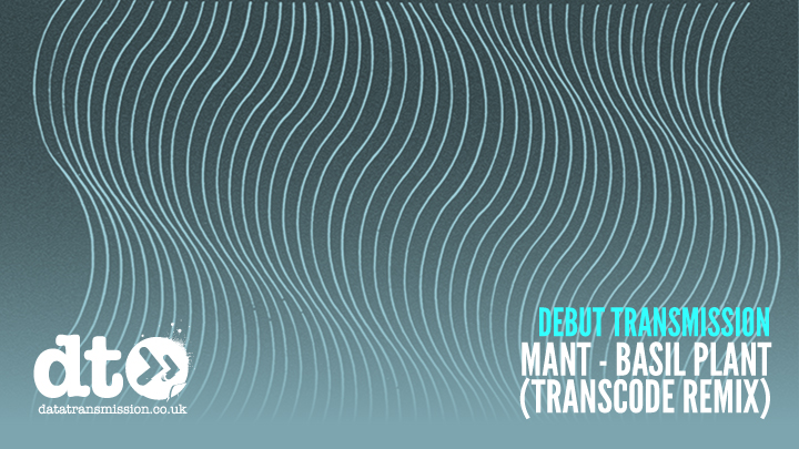 debut_MANT