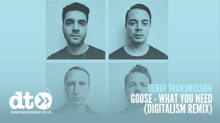 debut_goose