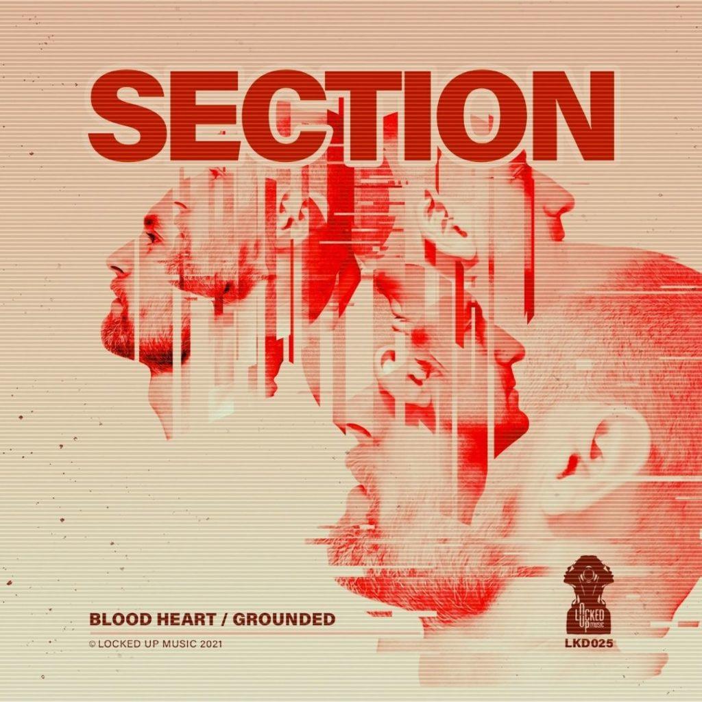 Section Blood Heart art